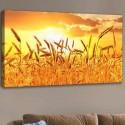 Kanvas Tablo - Meyve-Sebze (120x60)