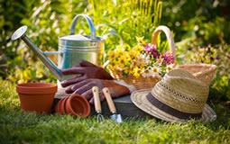 Bahçe ve Hırdavat