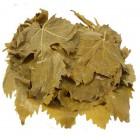 Salamura Asma Yaprağı